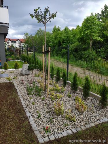 2020 ogrody tomszak maly ogrodek osiedle karpackie 3