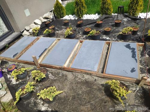 2020 ogrody tomszak maly ogrodek osiedle karpackie 8