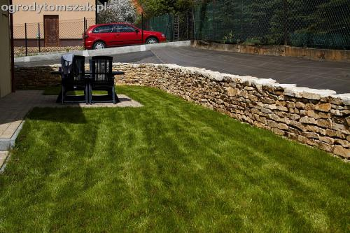 murek wapien halcnow trawnik siew IMG 6960