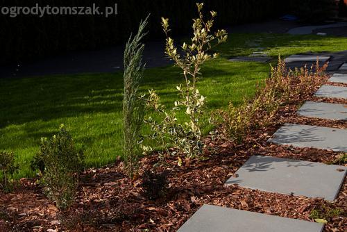 ogrod bystra obrzeze palstikowe trawnik plyty betonowe 09