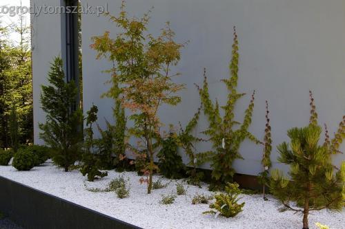 ogrod jaworze bielsko nowoczesny tomszak 08