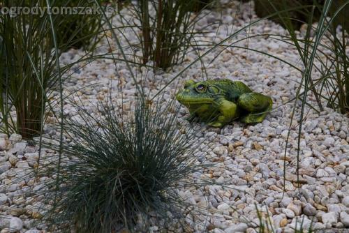 ogrod komorowice slaskie maly ogrodek sciezka piaskowiec donice kamienne skalniak gnejs 18