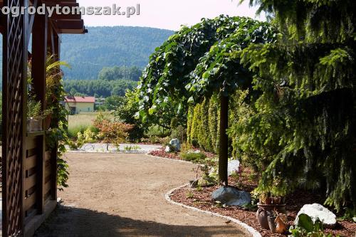 ogrod kozy oczko wodne kaskada grill ogrodowyIMG 5030