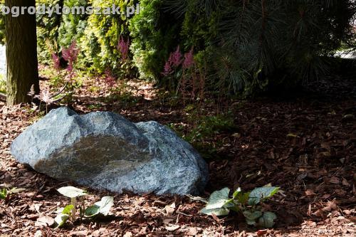 ogrod kozy oczko wodne kaskada grill ogrodowyIMG 5032