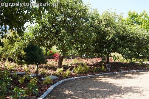 ogrod kozy oczko wodne kaskada grill ogrodowyIMG 5053