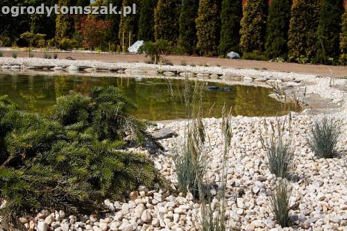 ogrod kozy oczko wodne kaskada grill ogrodowyIMG 5070