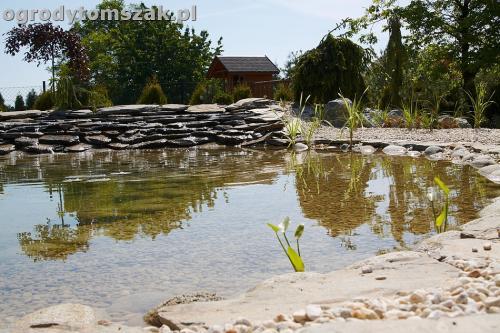 ogrod kozy oczko wodne kaskada grill ogrodowyIMG 5079