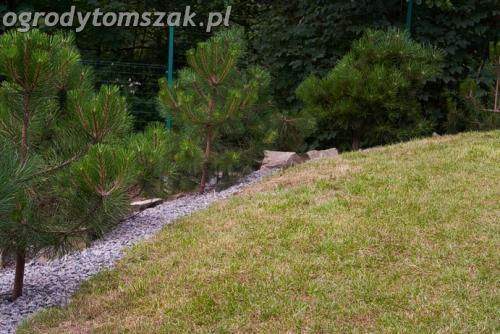 ogrod lipnik bielsko-biala ogrod monochromatyczny ogrod zielony IMG 7992