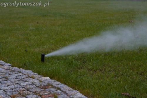 ogrod mazancowice bielsko biala zdjecie zdjecia projektowanie system nawadniajacyIMG 1158