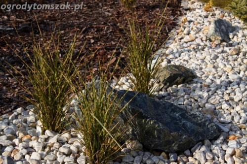 ogrod mazancowice bielsko biala zdjecie zdjecia projektowanie system nawadniajacyIMG 1183