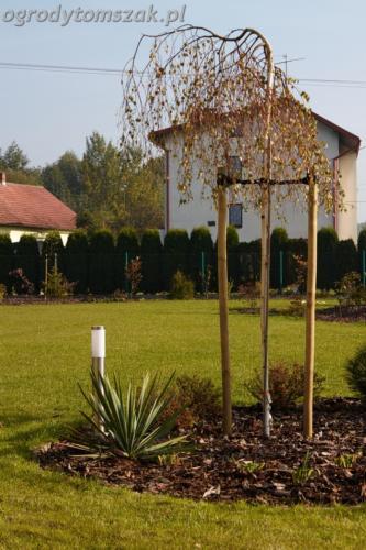 ogrod mazancowice bielsko biala zdjecie zdjecia projektowanie system nawadniajacyIMG 1198