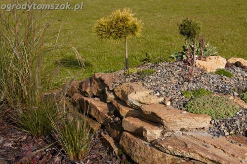 ogrod mazancowice bielsko biala zdjecie zdjecia projektowanie system nawadniajacyIMG 1212