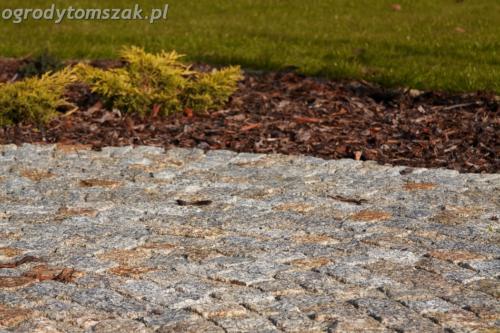 ogrod mazancowice bielsko biala zdjecie zdjecia projektowanie system nawadniajacyIMG 1216