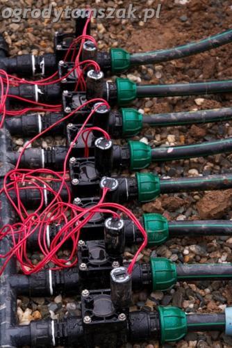 ogrod mazancowice bielsko biala zdjecie zdjecia projektowanie system nawadniajacyIMG 6261