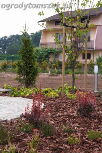 ogrod mazancowice bielsko biala zdjecie zdjecia projektowanie system nawadniajacyIMG 7940