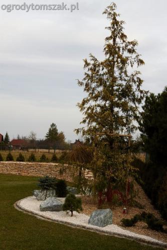 ogrod murek wapien duze rosliny avant miniladowarka sadzenie kamienica bielsko biala tomszak 08