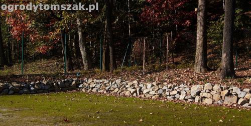 ogrod nowoczesny bystra piaskowiec trawnik lasIMG 5849