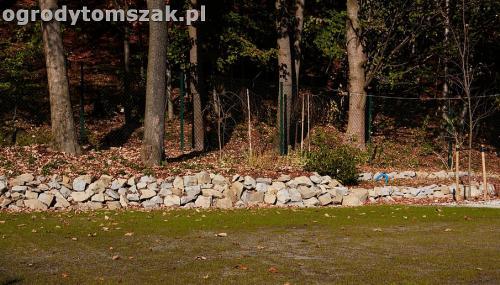 ogrod nowoczesny bystra piaskowiec trawnik lasIMG 5850