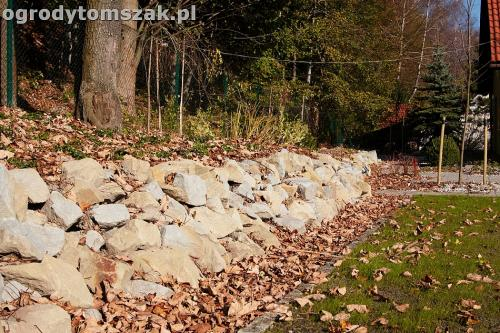 ogrod nowoczesny bystra piaskowiec trawnik lasIMG 5853