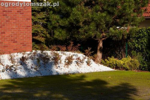 ogrod nowoczesny bystra piaskowiec trawnik lasIMG 5864
