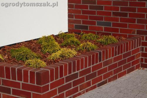 ogrod nowoczesny bystra piaskowiec trawnik lasIMG 5870
