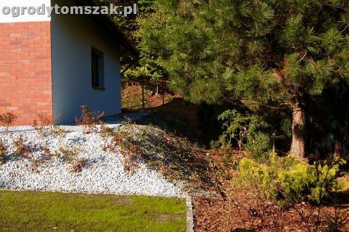 ogrod nowoczesny bystra piaskowiec trawnik lasIMG 5874