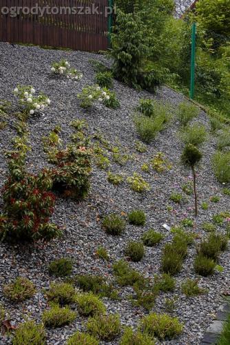 ogrod pewel zywiec lodygowice rybarzowice skarpa trawy metaloplastyka kaskada oczko wodne andezyt donica kamienna 25
