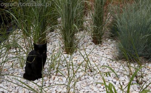 ogrod pewel zywiec lodygowice rybarzowice skarpa trawy metaloplastyka kaskada oczko wodne andezyt donica kamienna 30
