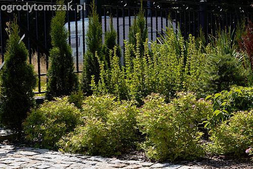 ogrod pod lasem komorowice krakowskie nawodnienie bruk oswietlenie ogrodu 01