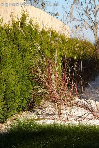 ogrod sciezka granit kamienny formowanie terenuIMG 5842