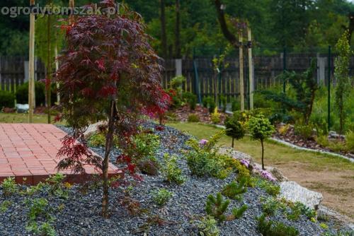 ogrod slask regeneracja trawnika 02