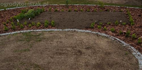 ogrod slask regeneracja trawnika 08