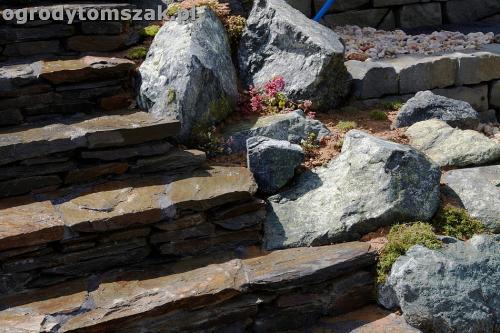 ogrod taras ziemny skalniak schody IMG 5491