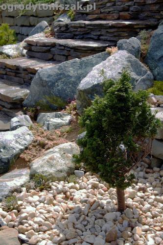 ogrod taras ziemny skalniak schody IMG 5493