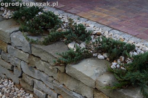 ogrod taras ziemny skalniak schody IMG 5499