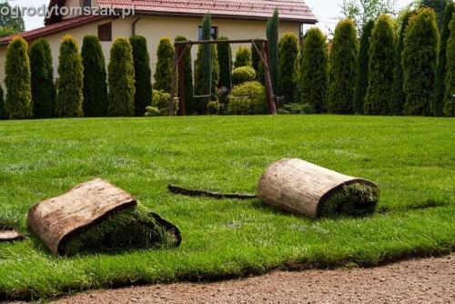 ogrod trawnik z rolki trawnik rolowany Czechowice-Dziedzice014