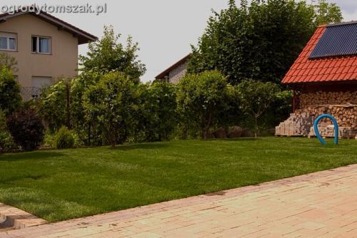 ogrod trawnik z rolki trawnik rolowany Czechowice-Dziedzice016