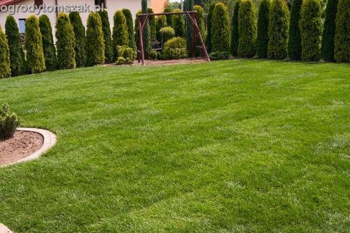 ogrod trawnik z rolki trawnik rolowany Czechowice-Dziedzice017