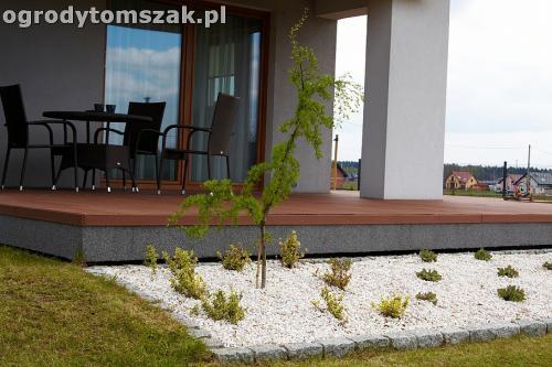 ogrod zory rosliny tomszak nowoczesny IMG 4476