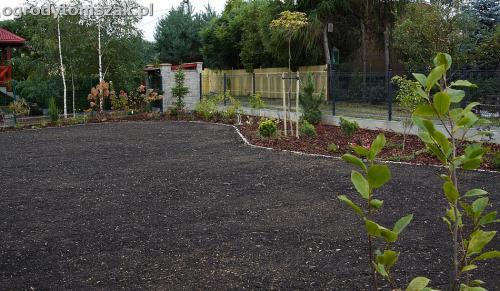 ogrod zywiec lesna projektowanie trawnik rosliny ogrodnik IMG 7796