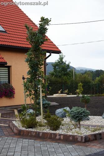 ogrod zywiec lesna projektowanie trawnik rosliny ogrodnik IMG 7807