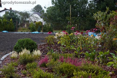 ogrod zywiec lesna projektowanie trawnik rosliny ogrodnik IMG 7809