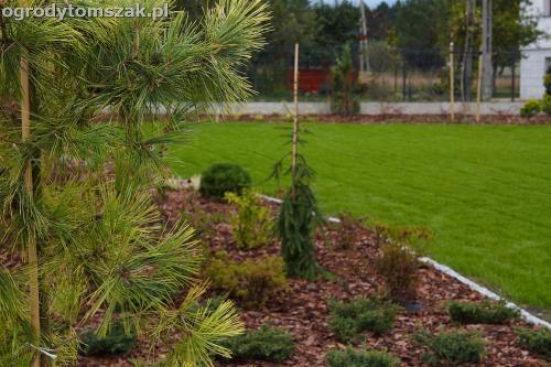 ogrod zywiec lesna projektowanie trawnik rosliny ogrodnik IMG 8012