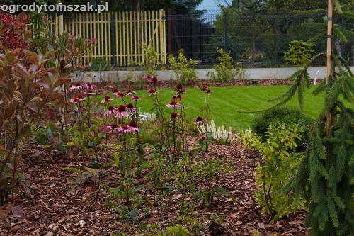 ogrod zywiec lesna projektowanie trawnik rosliny ogrodnik IMG 8013