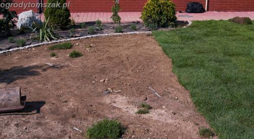 Porąbka - ogród przy basenie, trawnik z rolki