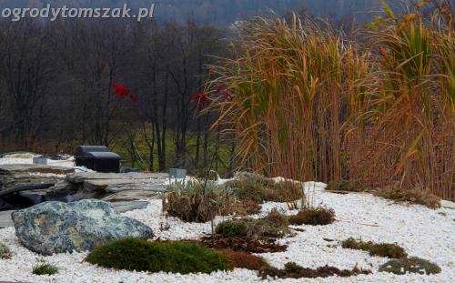 ogrody tomszak Lipnik Bielsko Biala oczko wodne woda w ogrodzie kaskada 01