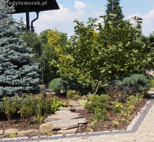ogrody tomszak jaworze016