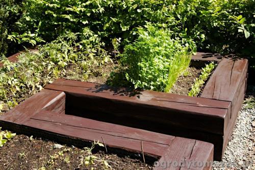 ogrody tomszak kozy trawnik oczko wodne obsadzanieIMG 7890