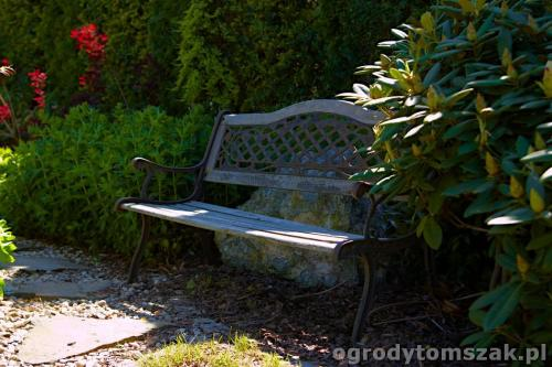 ogrody tomszak kozy trawnik oczko wodne obsadzanieIMG 7896