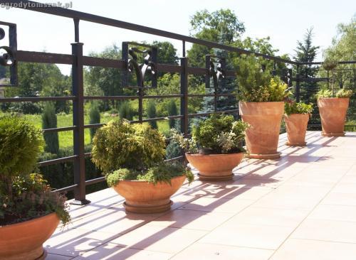 Jaworze - taras, balkon